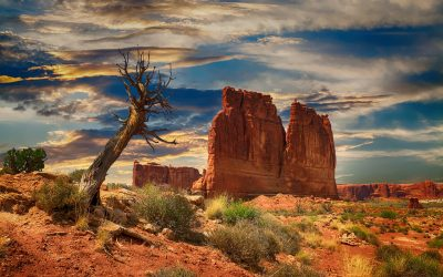 Leading Tours through the Southwest National Parks